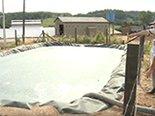 tratamento-efluentes-farinha-mandioca-adubo