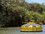 afluentes-rio-doce-revitalizacao