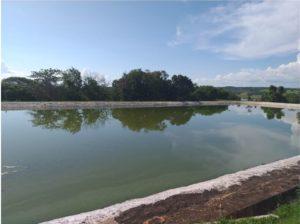 Lagoa DMAE
