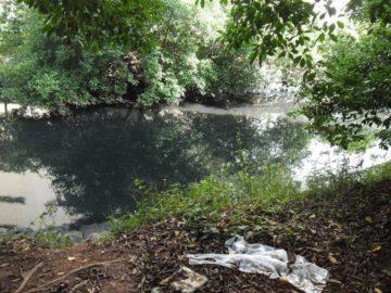 canal do marabaia