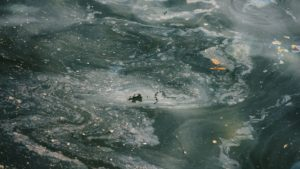 agua-poluida