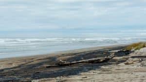 oleo-praia